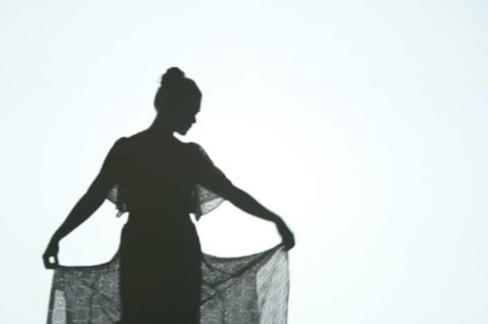 ombre-chinoise-theatre-silhouette-marionette-tournai